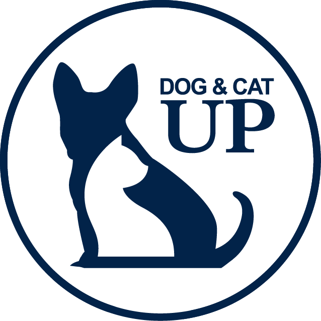 导航logo