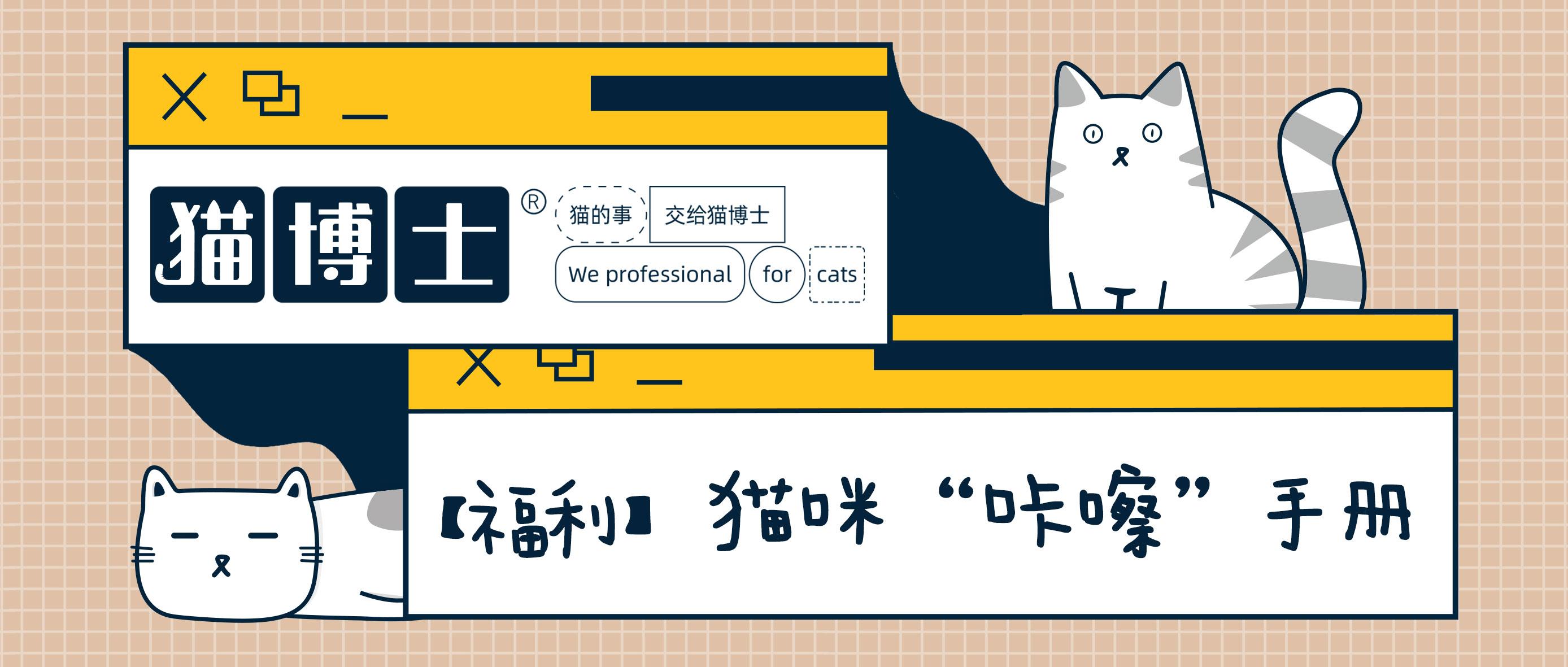 """猫咪""""咔嚓""""手册"""
